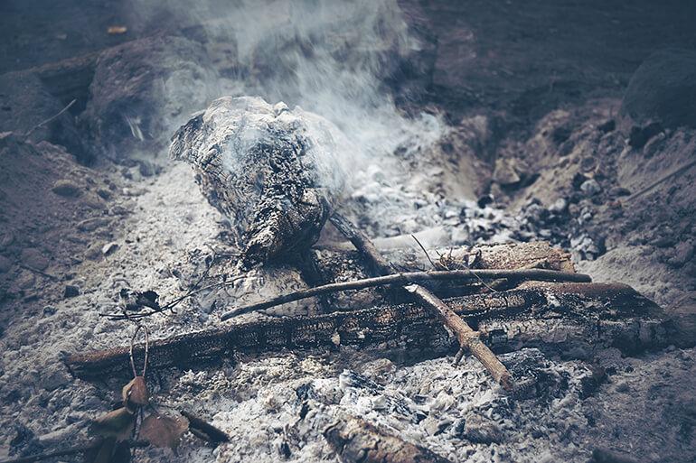 Cenizas tras un incendio forestal