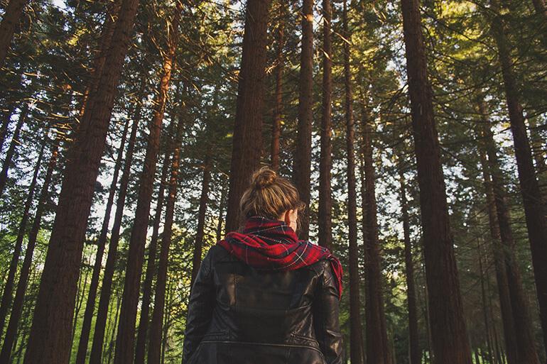 Relación humanos bosques: mutua necesidad de los unos y los otros