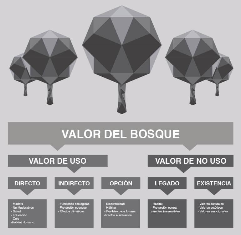 Infografía valor de uso y no uso del bosque