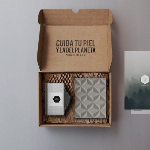 BOX_Esencial_05