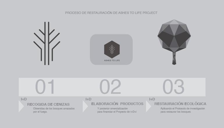 Infografía del proceso para restaurar bosques incendiados