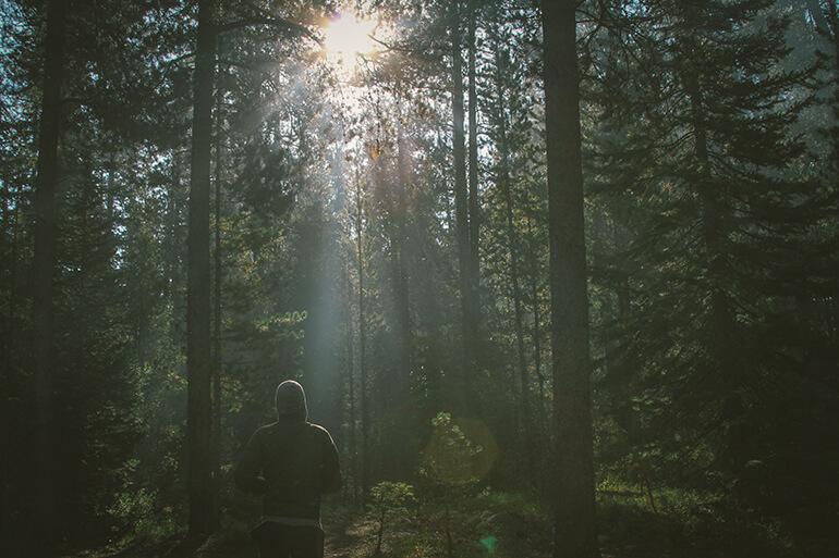 Hombre corriendo por el bosque al amanecer