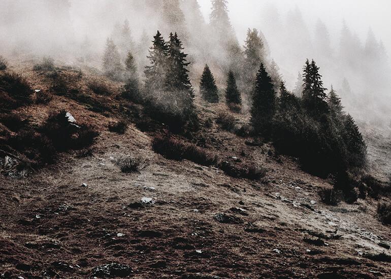 """El suelo es un recurso natural """"no renovable"""" a corto y medio plazo."""