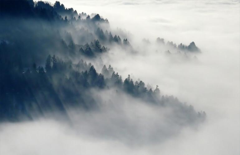 Resulta necesario comprometerse y encontrar soluciones y alternativas eficaces a la nueva generación de incendios forestales