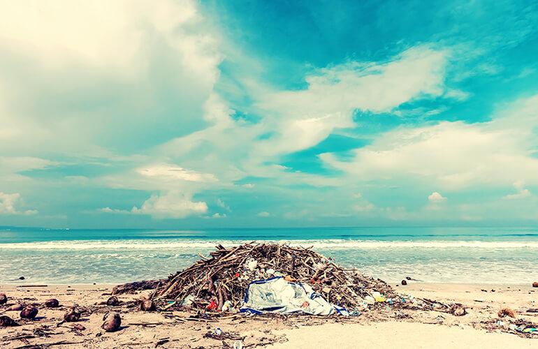 El plástico, según el tipo, suele tardar en descomponerse en el medio ambiente entre 450 - 1.000 años