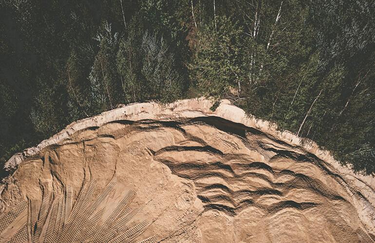 Restaurar y proteger ecosistemas forestales es clave para combatir la actual emergencia climática