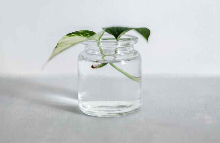 Las especificaciones del vidrio lo convierten en una alternativa ideal para lograr un mundo más sostenible.