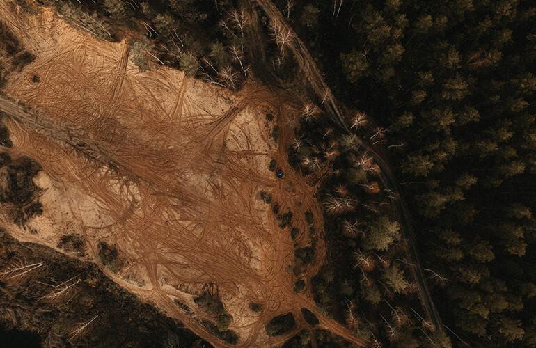 bosques-incendiados